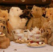 BPMM's Teddy Bear Tea