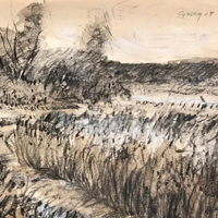 Spring Sketching Classes with Mary Colby